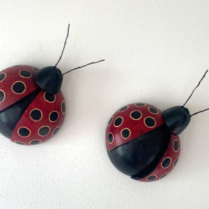 Ladybugs made of gourds